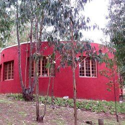 casa-cachagua-17